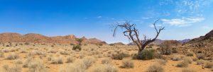 Kalahari desert in Namibia