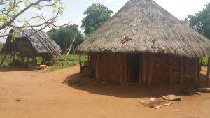 Bana house