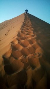 The view while climbing Dune 45