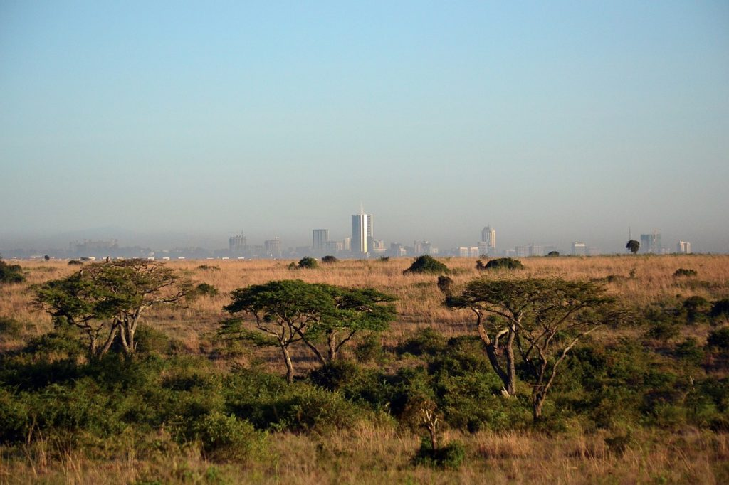 Nairobi skyline from Nairobi National Park