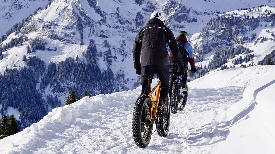 Fatbikes on a snowy trail