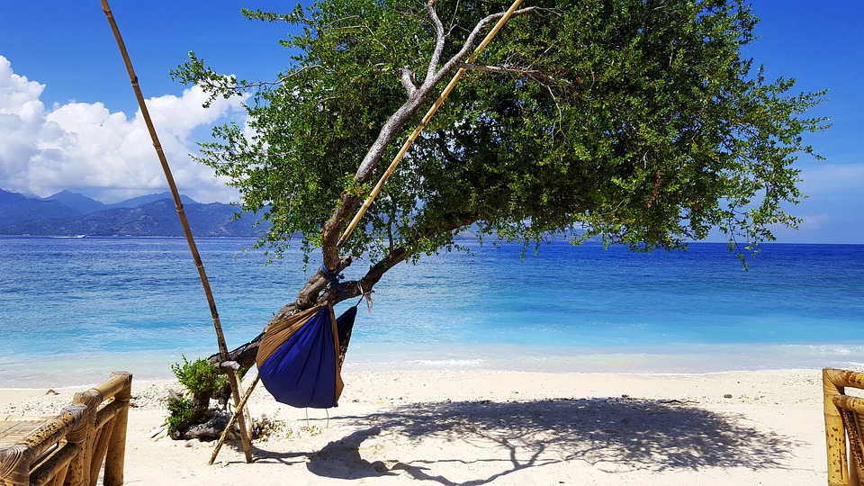 a hammock on a tropical beach