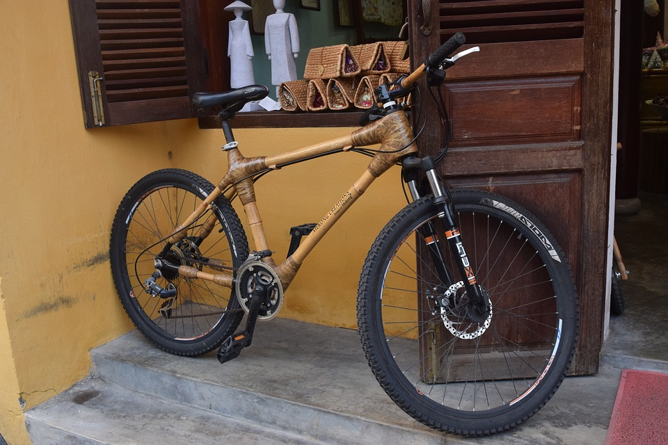 bike with disc brakes