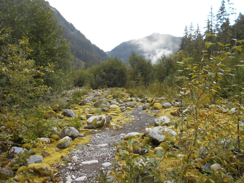 the Wonderland Trail