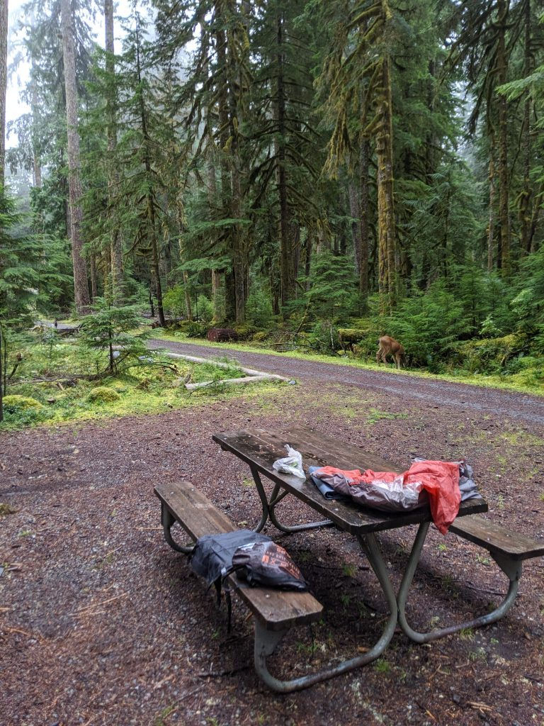 Ipsut Creek campground on the Wonderland Trail