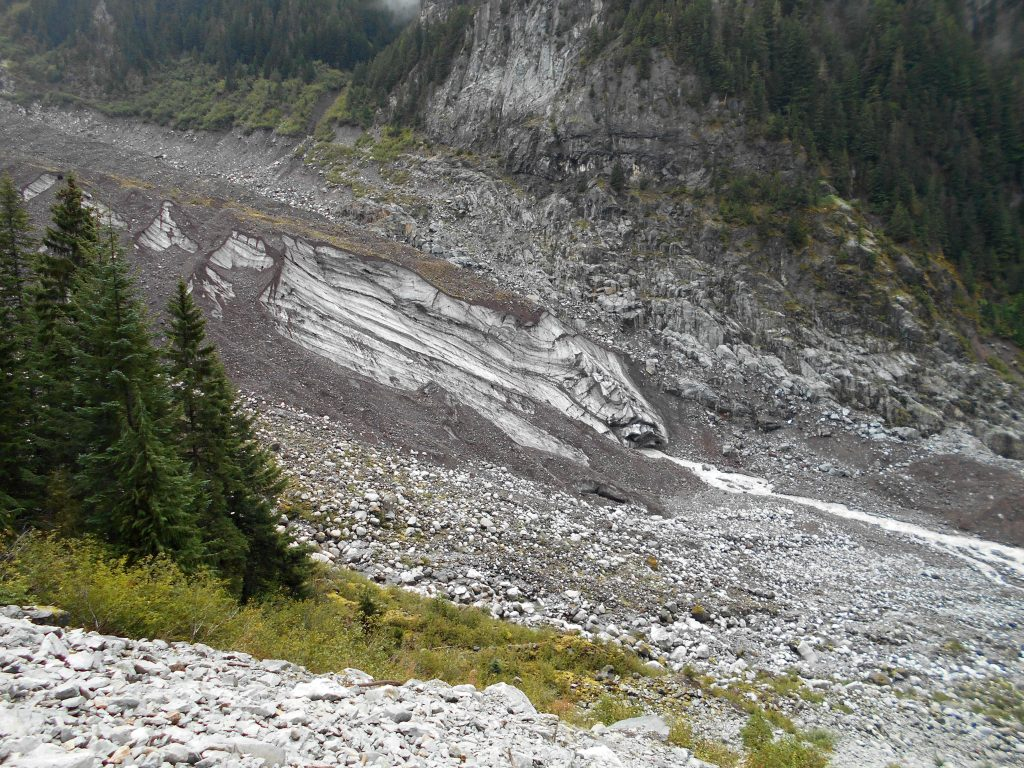 Carbon Glacier from the Wonderland Trail