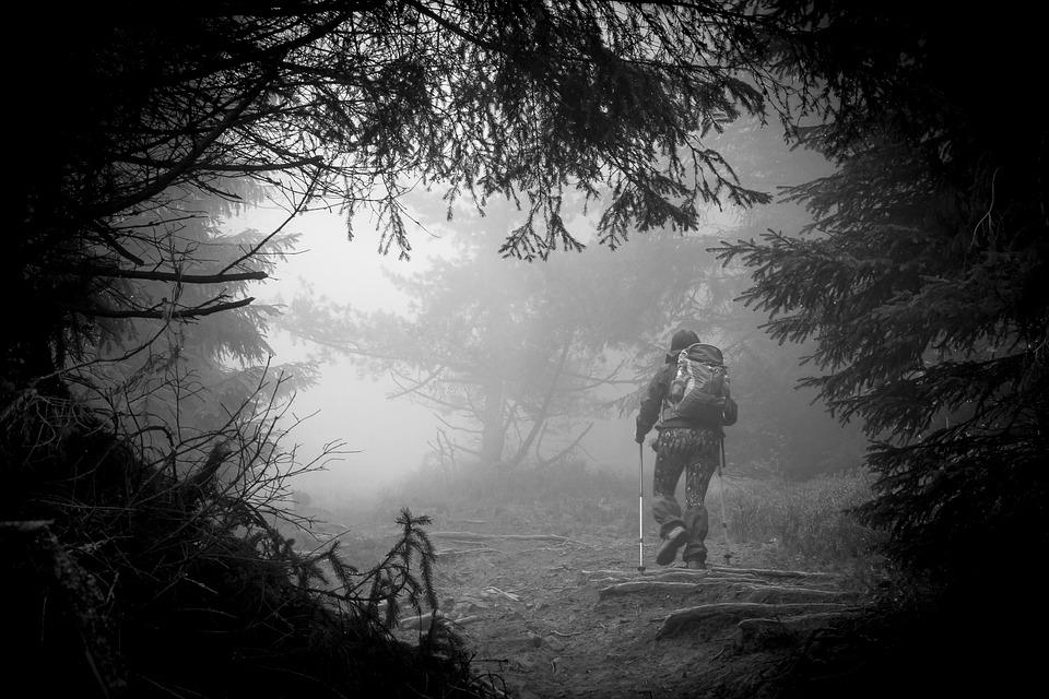 A hiker using trekking poles
