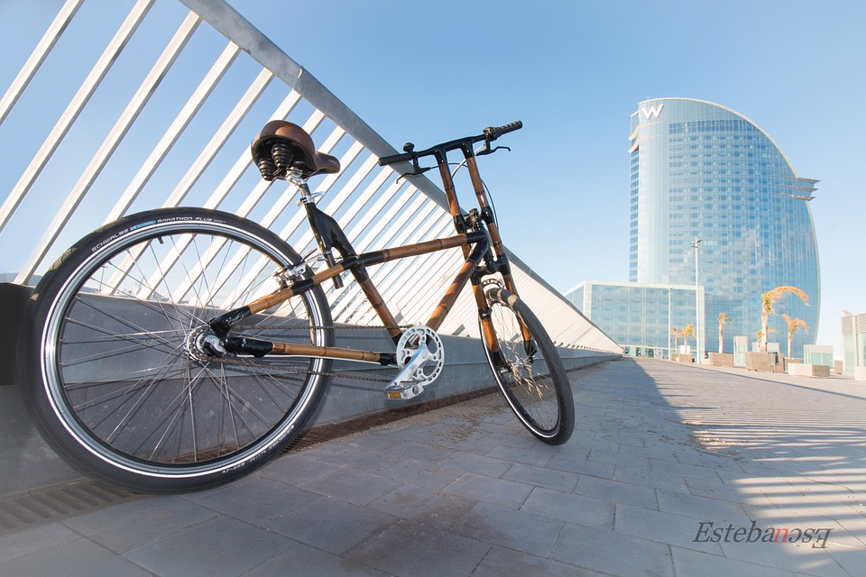 a bamboo bike with a unique frame shape